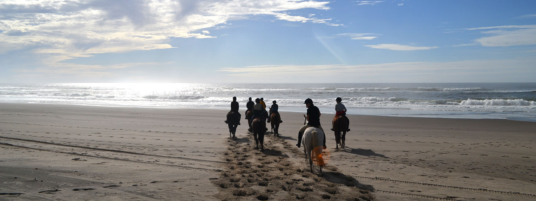 English Horseback Riding Tours In The Pacific Northwest