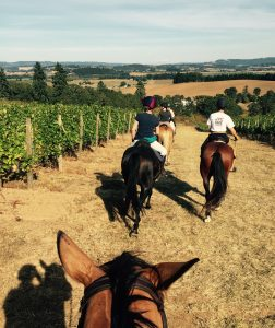 riding in wine country